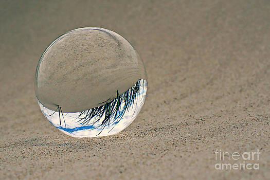 Beachbalance by Ste Flei