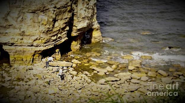 Beachcombing by Andrew Allsopp