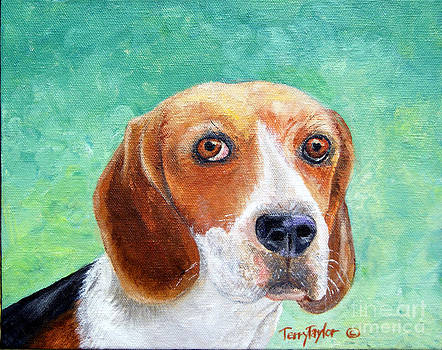 Beagles Rock by Terry Taylor