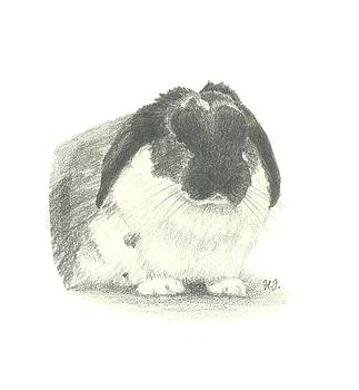 Beamish by Helen John