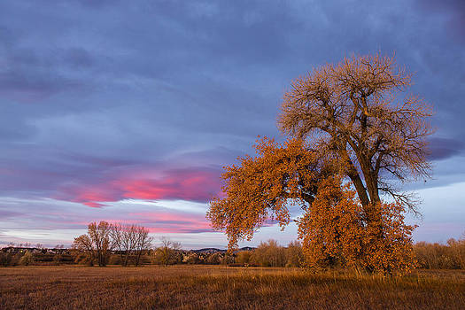 Tim Grams - Bear Creek Sunrise
