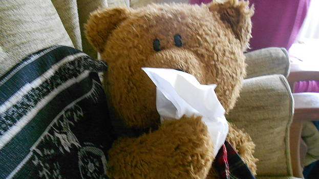 Bear Flu by Jacqueline Hickey