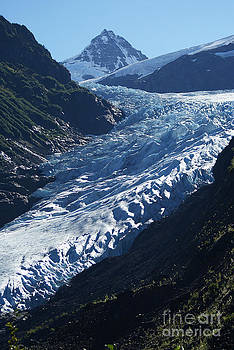 Bear Glacier by Stanza Widen