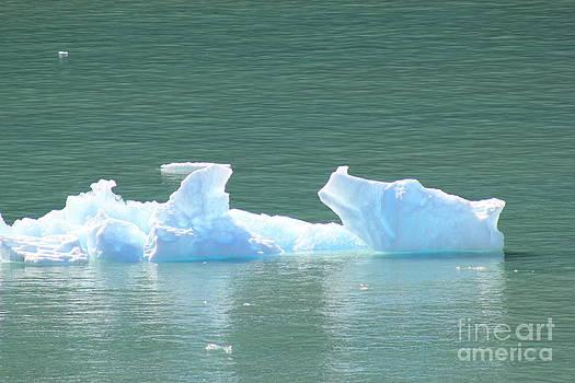 Bear Ice by Susan Meade