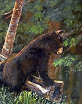 Bear in the Woods by Judie White