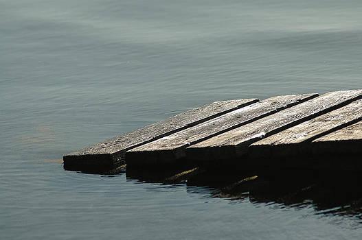 Bear Lake by Carl Nielsen