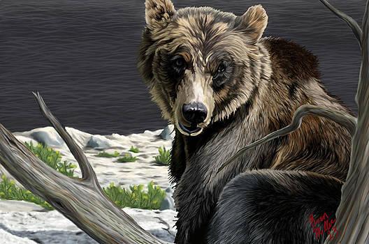 Bear Of Ah Day by Brien Miller