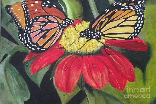Beautiful Butterflies by Carol Northington