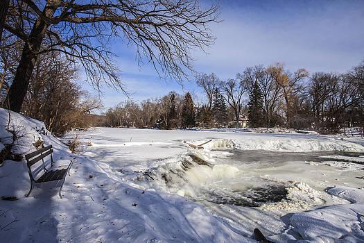 Beautiful Freeze by CJ Schmit