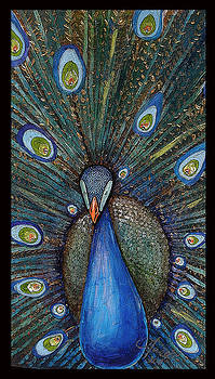 Beautiful Peacock by Amanda  Ferrell-Hale