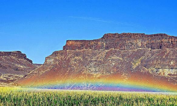 Beautiful Rainbow by Duane King