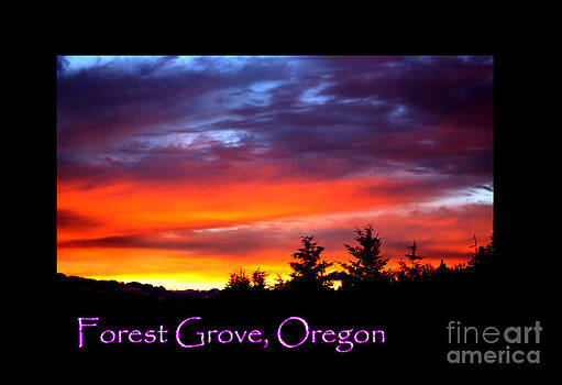 Nick Gustafson - Beautiful Skies Forest Grove