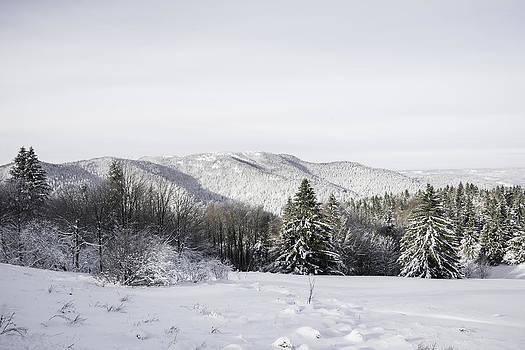 Beautiful winter landscape by Patrick Kessler