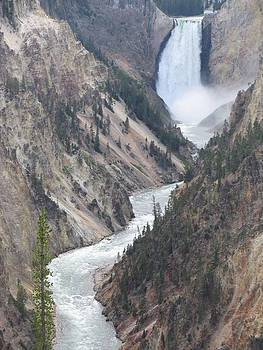 Beautiful Yellowstone by Shawn Hughes