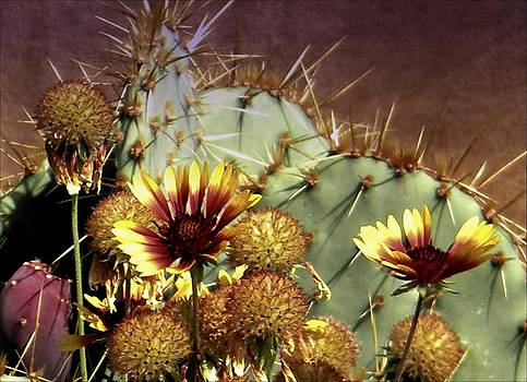 Beauty Amongst the Thorns by Michelle Frizzell-Thompson