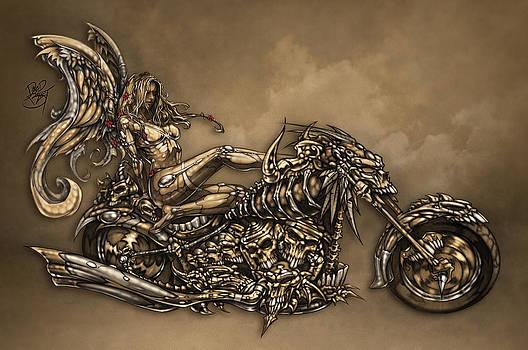 Beauty and the Beast by David Bollt