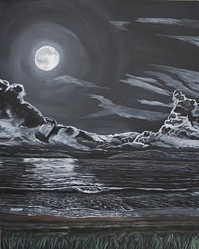 Ian Donley - Beauty of the Night