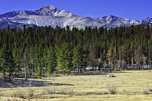 Beaver Meadows by Tom Wilbert