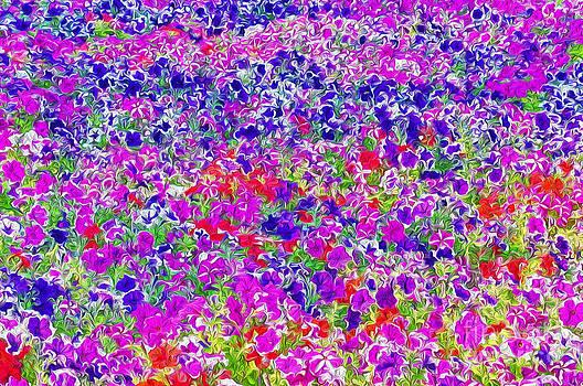 Bed of Flowers by George Paris