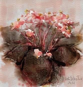 Begonias by Gilberto De Martino