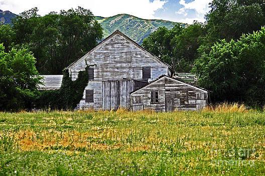 Behind The Barn by Juls Adams