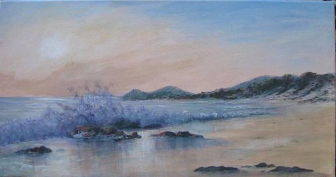 Beilby's Beach by Rita Palm