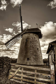 English Landscapes - Bembridge Windmill bw