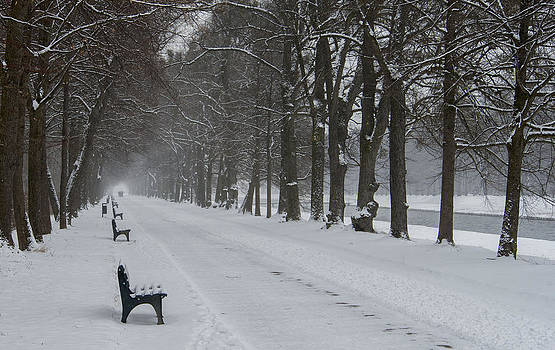 Bench Row   by Heide Stover