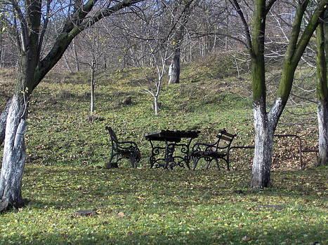 Benches by Emilija Cerovic