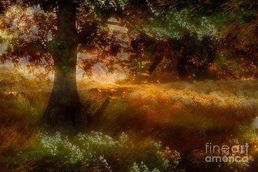 Dan Carmichael - Beneath the Giants - a Tranquil Moments Landscape