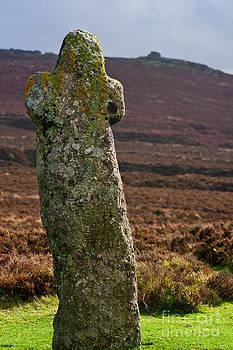 Bennets Cross Dartmoor National Park by Sharon Kingston