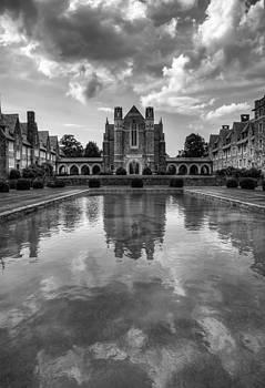Berry University by Rebecca Hiatt