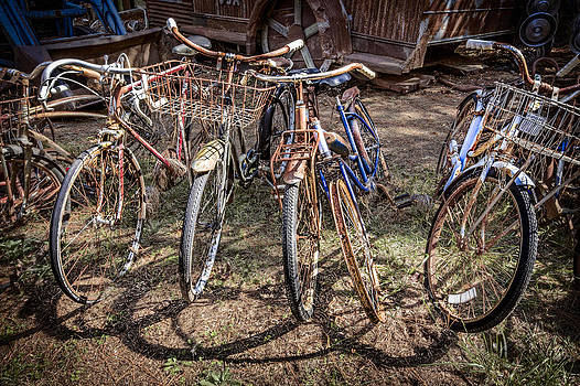Debra and Dave Vanderlaan - Bevy of Bicycles
