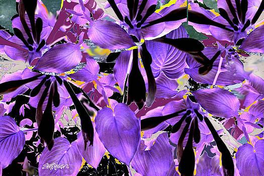 Beware The Midnight Garden by Seth Weaver