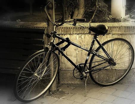 Bicycle by Amr Miqdadi