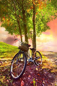 Debra and Dave Vanderlaan - Bicycle Under the Tree
