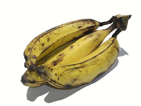 Big Bananas by Joe Zachariah