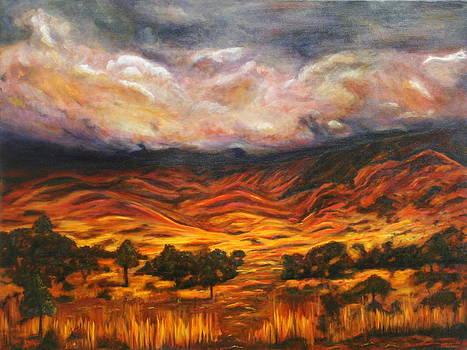 Big Gountry - Mac Donnell Ranges Australia by Lyndsey Hatchwell