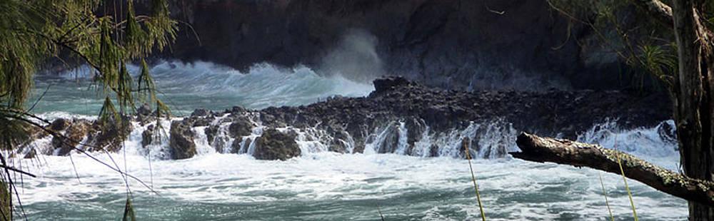 Big Island Shore I by Mark L Watson