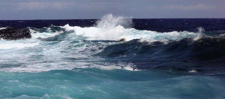 Big Island Shore II by Mark L Watson