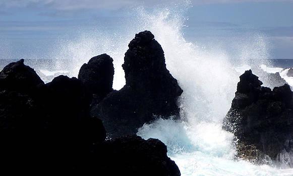 Big Island Shore III by Mark L Watson