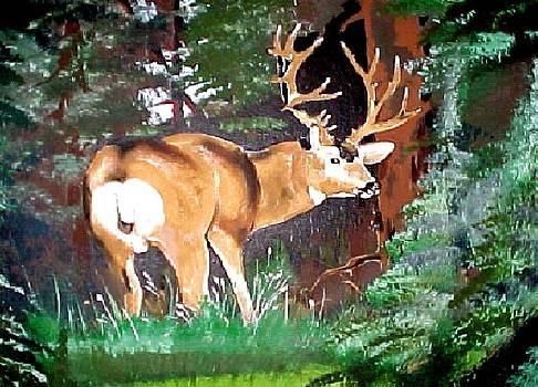 Big Mule Deer by Wayne  Ligon