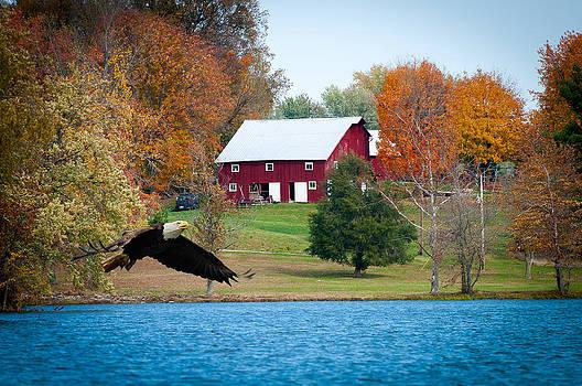 Randall Branham - Big Red Barn Eagle Rocky Fork