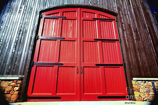 Cheryl Young - Big Red Doors