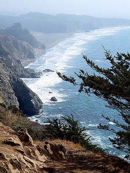 Big Sur by EG Kight