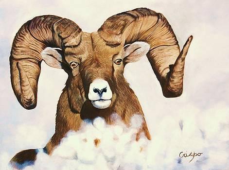 Bighorn sheep by Jean Yves Crispo