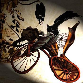 Bike by Theda Tammas