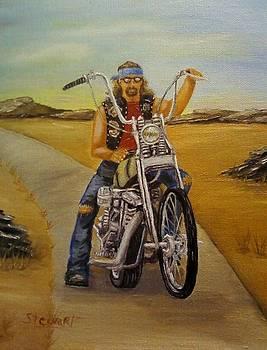 Biker on Lonely Country Road by Nancy Stewart