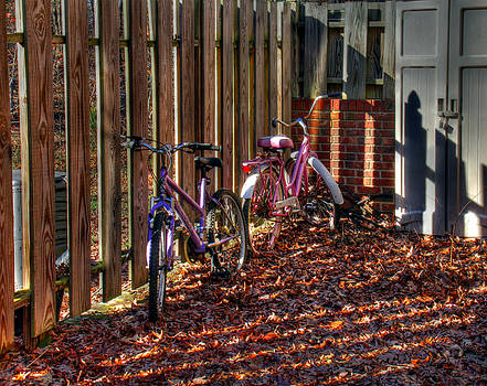 Bikes waiting for Spring by Andy Lawless