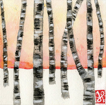 Birch at Sunset by Jamie Seul